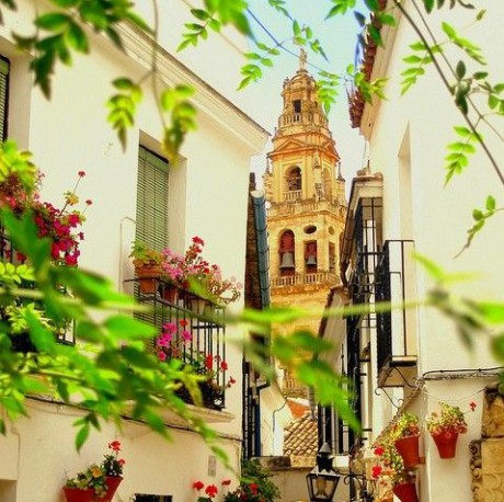 educational-tour-operator-in-Spain-offers-a-school-tour-to-andalusia