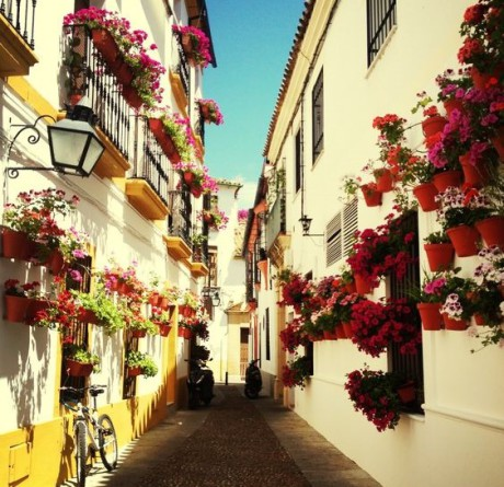 school-trips-and-homestays-for-spanish-language-students-in-andalucia
